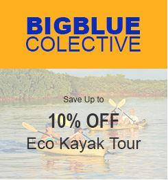 Eco Kayak Tour – 10% OFF